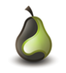 Pear Analytics Logo